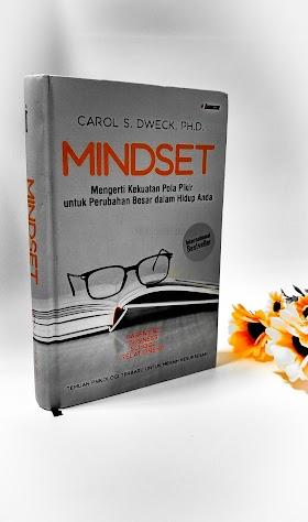 Mindset : Tentang Cara Berpikir Dan Hubungannya Dengan Cinta Serta Profesi
