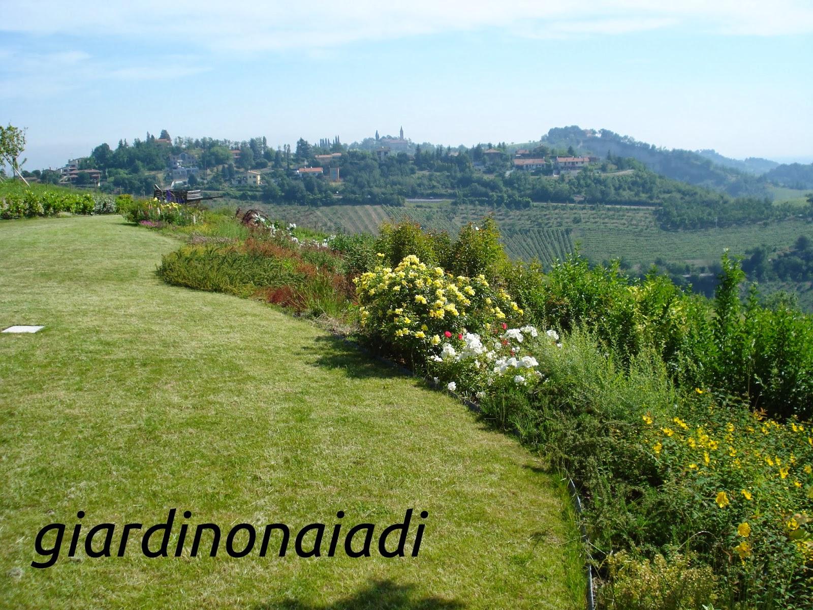 Siepi Miste Da Giardino il giardino delle naiadi: lo stile: il giardino di campagna