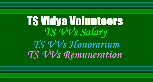 TS Vidya Volunteers Salary/ Honorarium / Remuneration is Rs