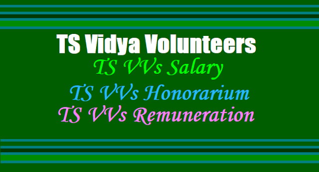 GO.86,TS Vidya Volunteers Salary Honorarium Remuneration,TS VVs Salary Honorarium Remuneration