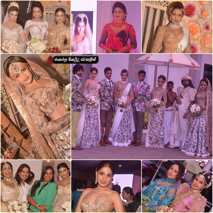 Bride Groom Wedding Fair 2016