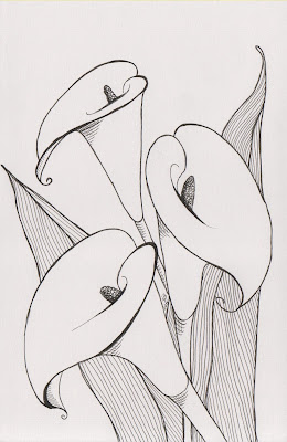 black and white illustration of calla lillies in ink on paper