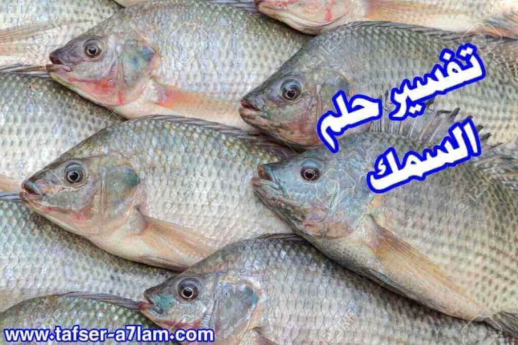 تفسير حلم السمك النيء