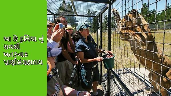 Lehe Ledu Wildlife Zoo Gujarati