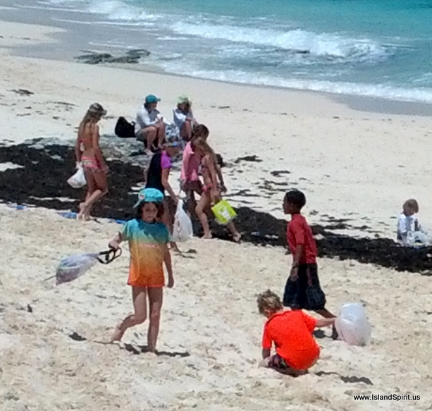 Easter Island Beaches: Island Spirit Sailing Adventures: Jib Room To Man O War To