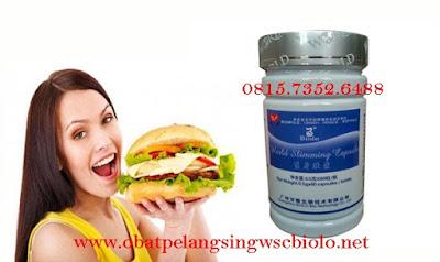 Obat Pengurang Nafsu Makan Yang Aman