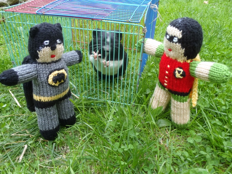 Stanas Critters Etc.: Knitting Pattern for Batman and Robin