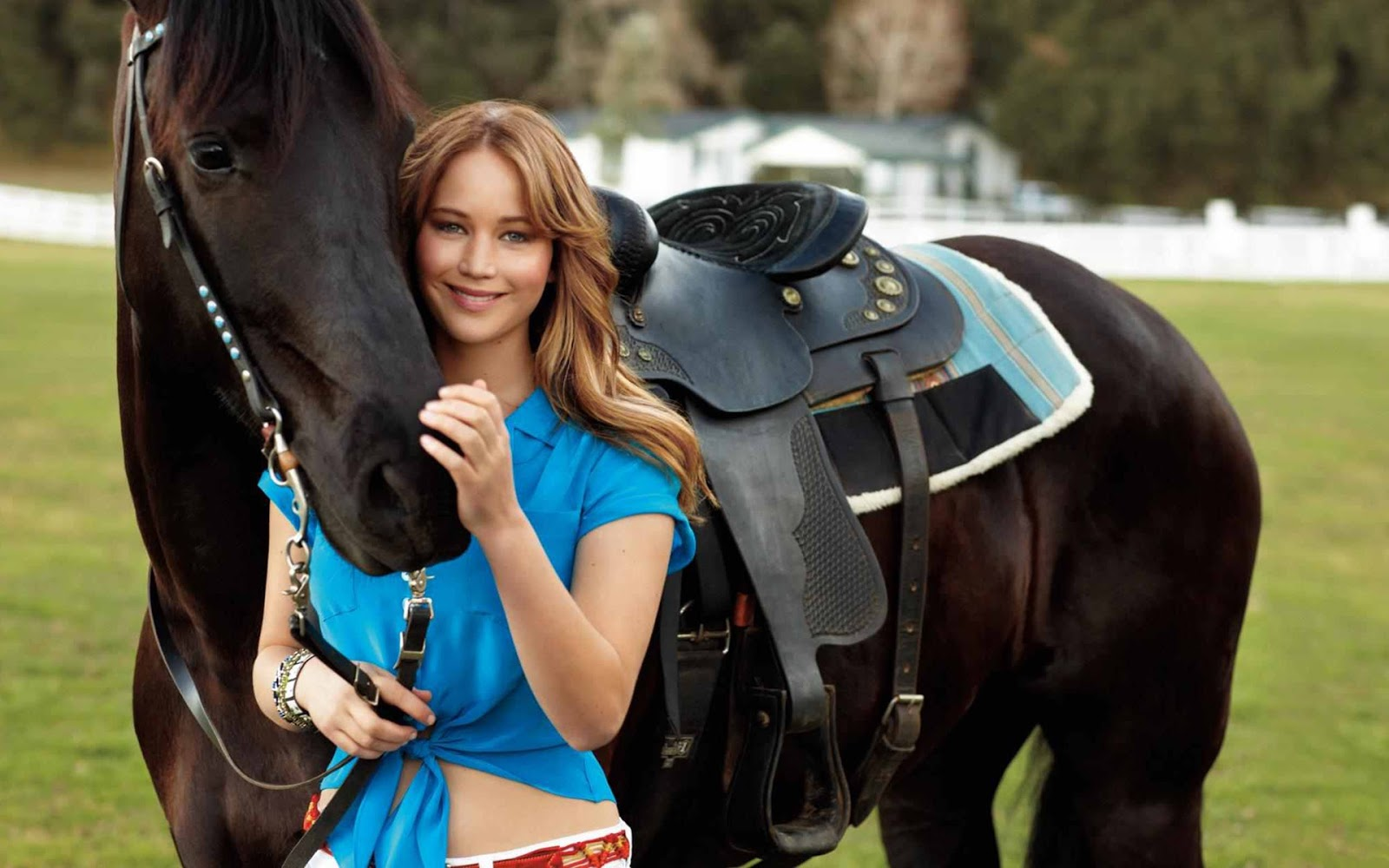 Jennifer Lawrence Hot Hd Photos  Wallpaper - Hd Images -9135