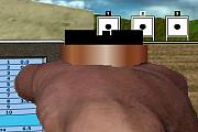 Simulador de tiro outdoor