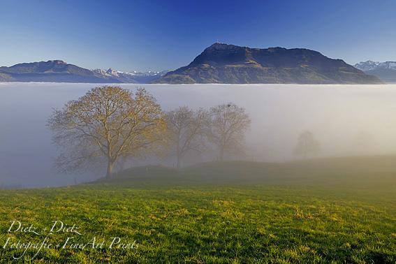 Nebelgrenze, Rigi - LU