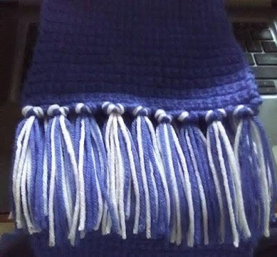 Veggies First Then Dessert - Blue Crochet Scarf