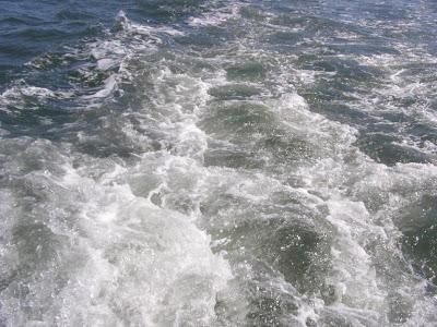 Bassin d'Arcachon (C) personnelle