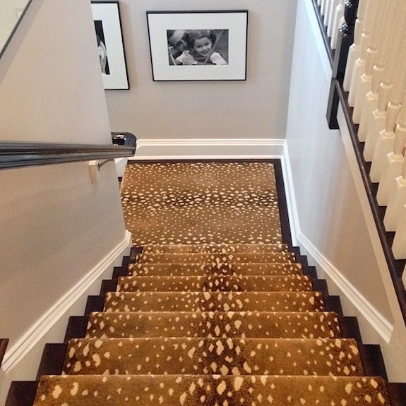 Animal Print Rug Runners For Stairs: The Zhush: Progress Peeks: Our New House