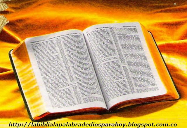 La palabra diaria de dios evangelica - Rezar para pedir algo