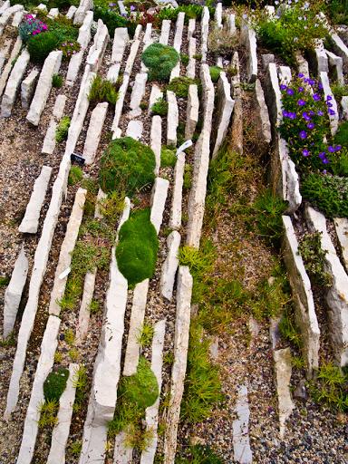 Czech Crevice Garden - Allen Centennial Gardens - Madison WI