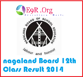 NBSE HSSLC Result 2014 declared, download form nbsenagaland.com