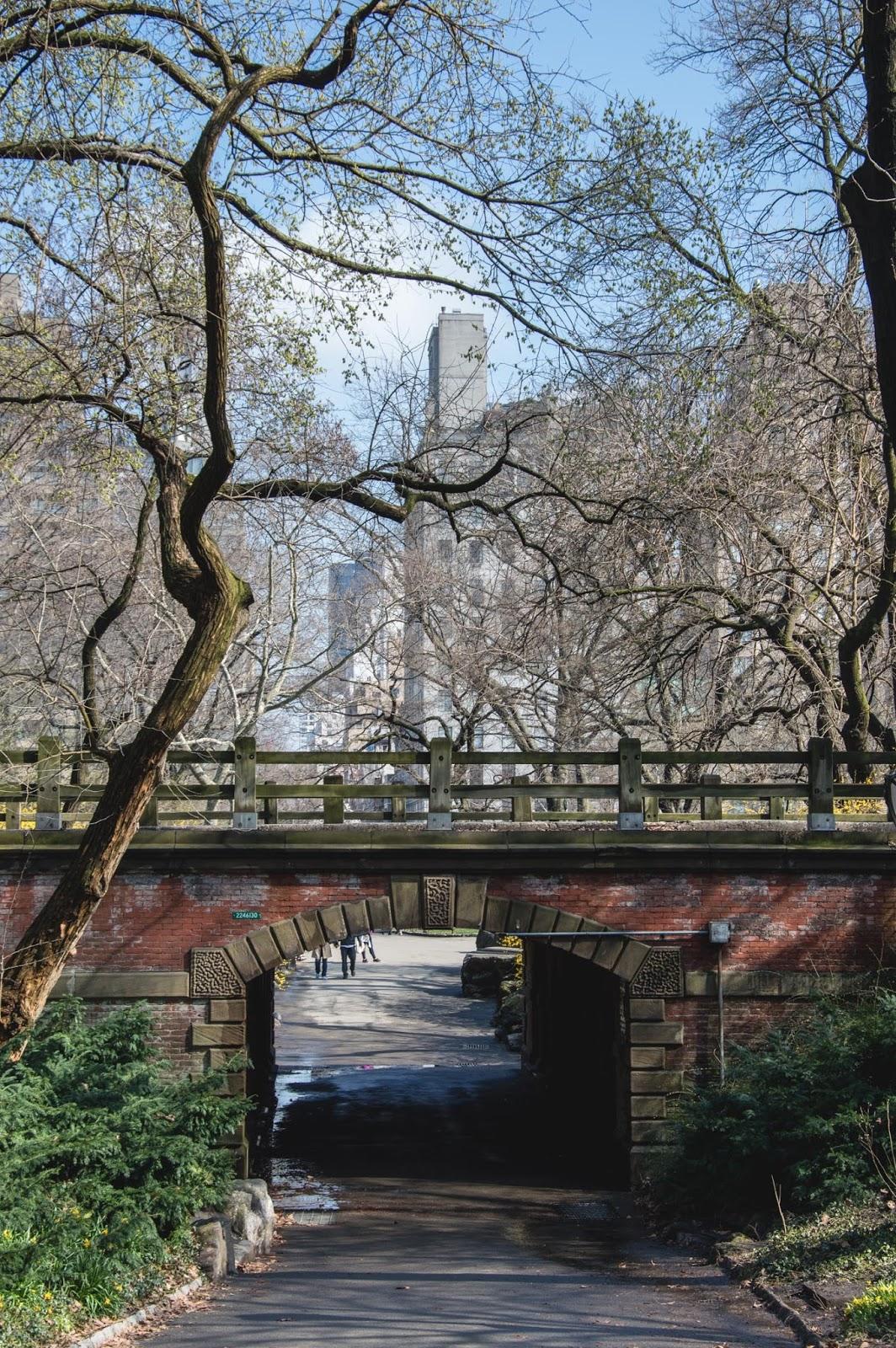 Old bridge in the Central Park