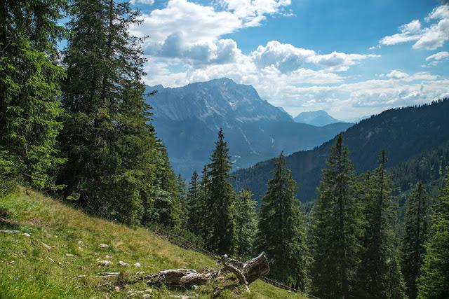 Wanderung zur Stepbergalm  Wandern Garmisch-Partenkirchen  Stepbergtour Alpentestival-Garmisch-Partenkirchen 12