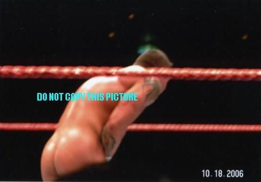 Randy Orton Ass 18