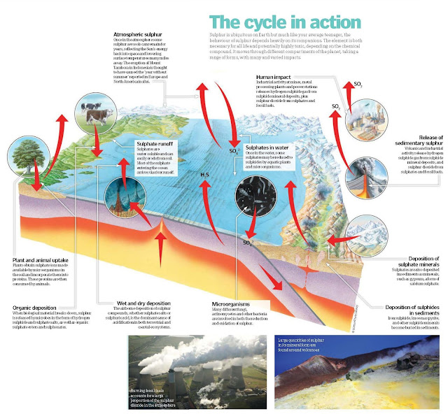 The Sulphur Cycle, Sulphur and the climate,