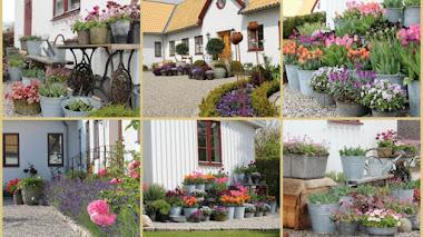 Una de Instagram: Inspiración y jardín en macetas con Karolina Länsmansgården