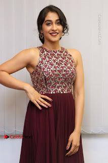Saravanan Irukka Bayamaen Movie Success Meet Stills