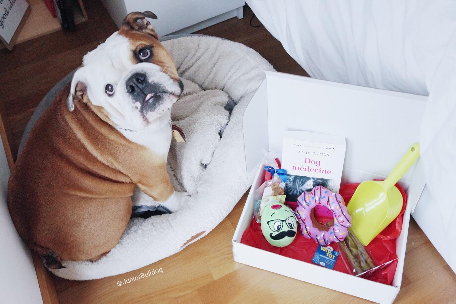 my petybox box cadeaux pour chiens