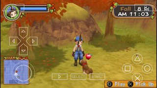 Harvest moon hero of leaf valley power berry