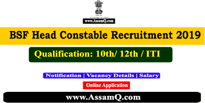 BSF Head Constable Online Recruitment 2019 | [1072 Vacancy ]