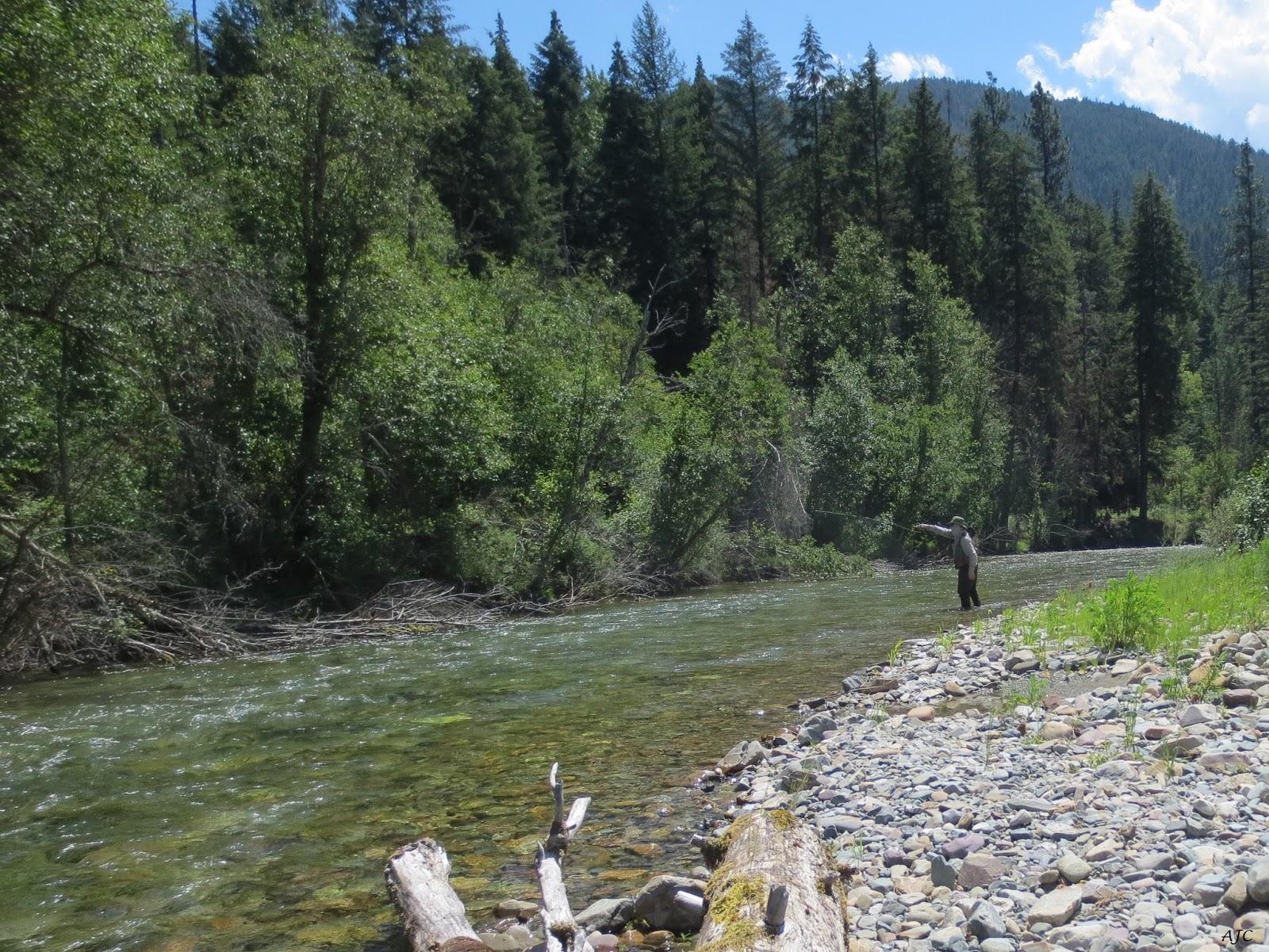 Idaho fly fishers idaho montana fishing fly fishing for Fly fishing boise idaho