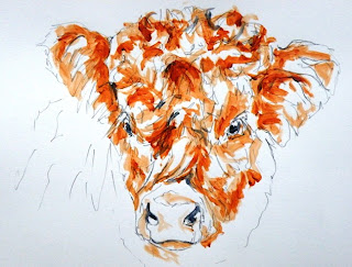 Highland cow painting, contemporary bovine art!
