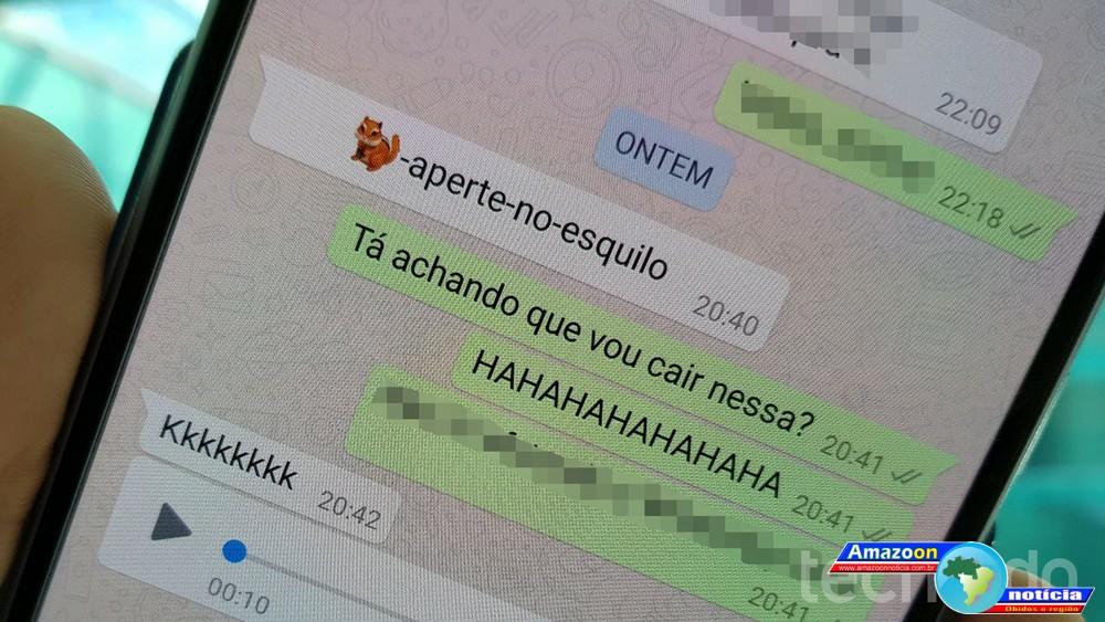 Falha no WhatsApp trava app e até o celular ao receber emoji de esquilo