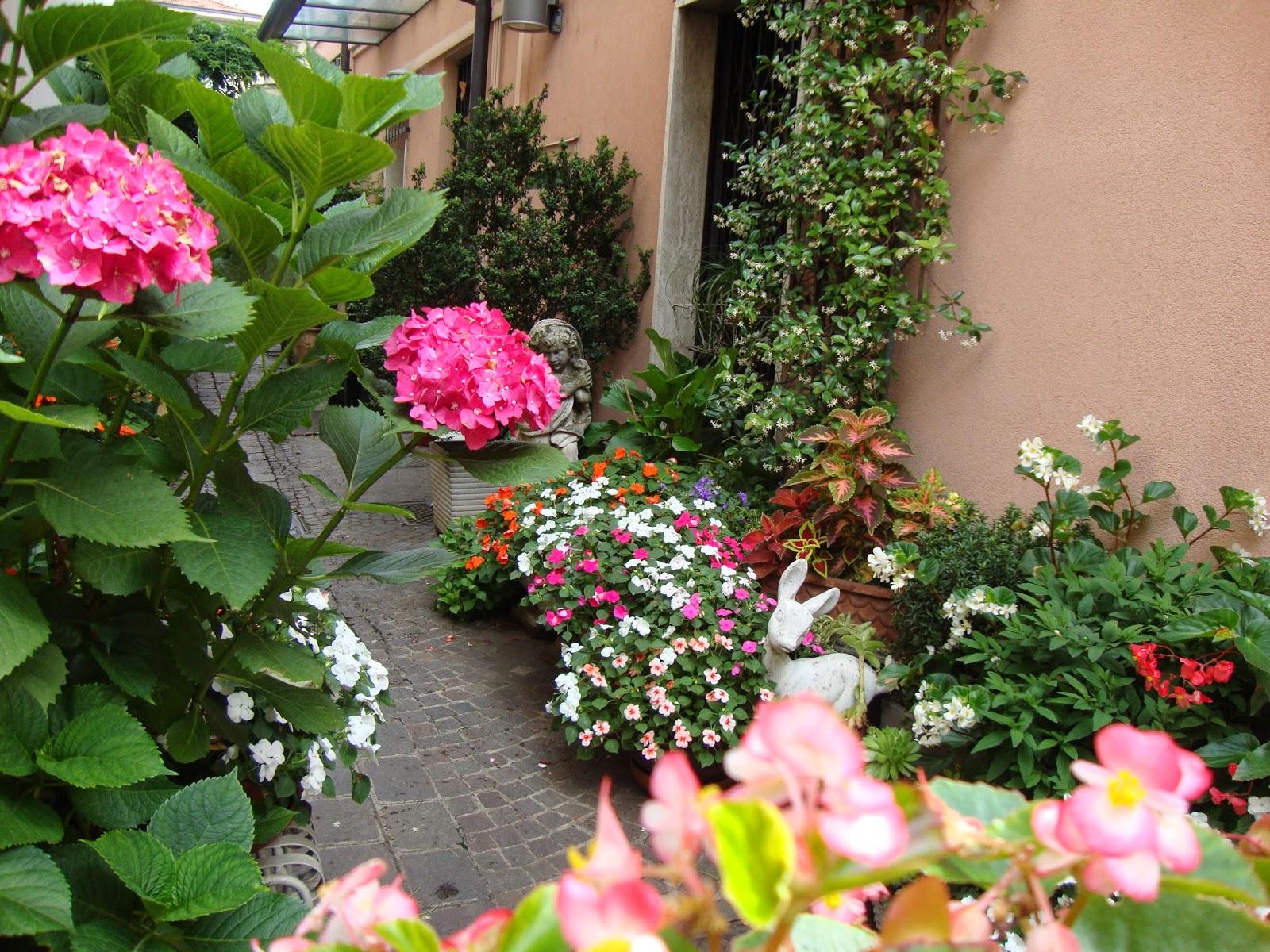 Un piccolo giardino in citt un piccolo giardino in vasi - Fiori di giardino ...