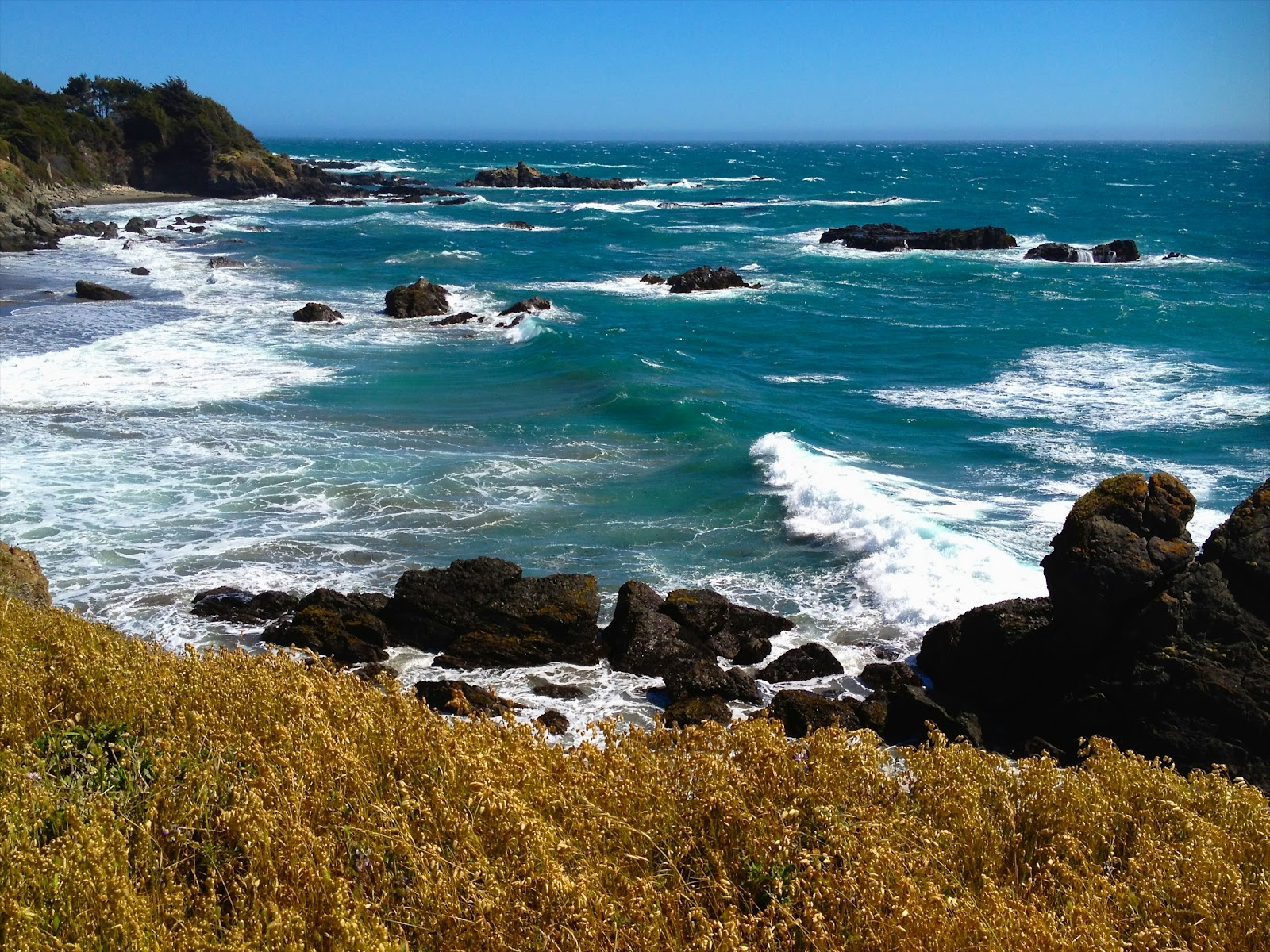 Swimmable California Beaches | USA Today  |Pacific Ocean California
