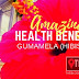 Amazing Health and Eco Benefits of Hibiscus also known as Gumamela