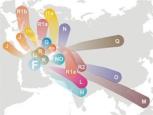 Popoli europei amano viaggiare da sempre: Dna rivela tendenza