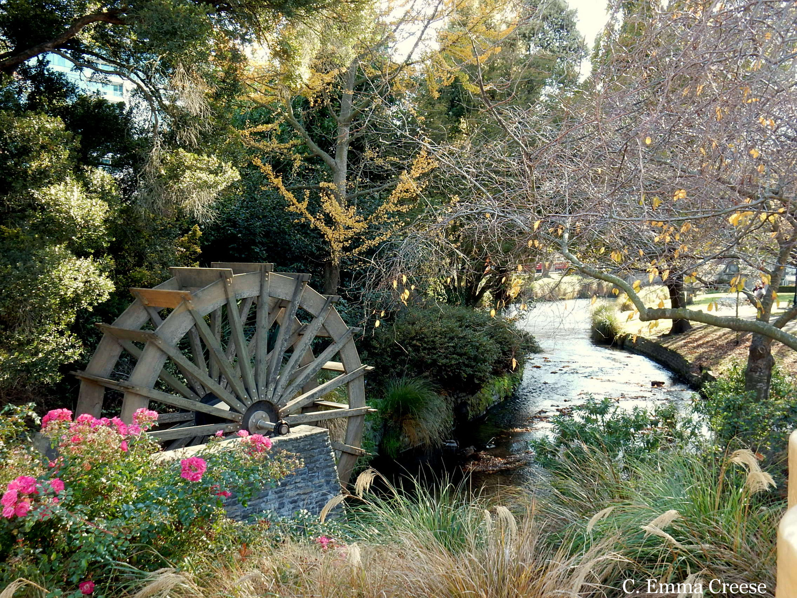 10 things to do in Christchurch River New Zealand