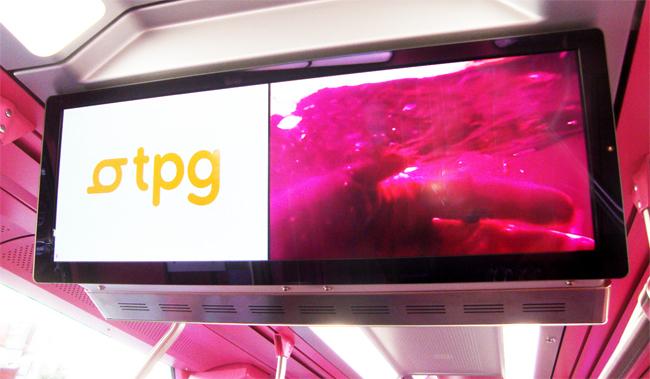 pink train, geneva, Pipilotti Rist