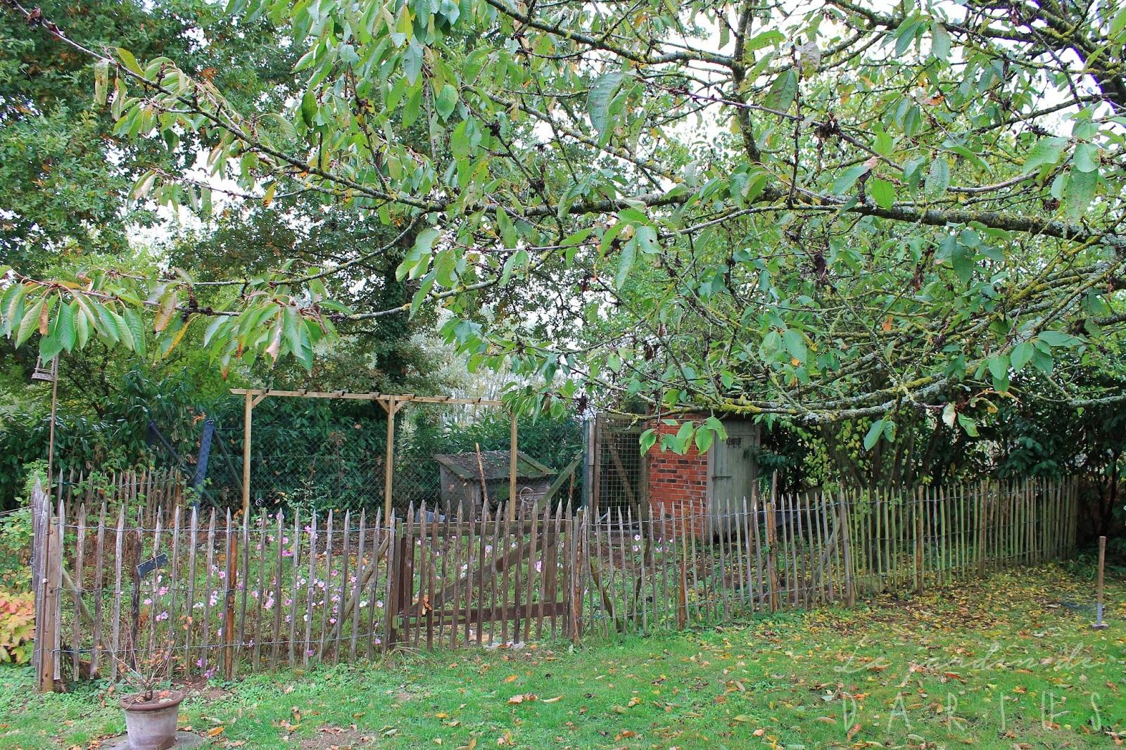 Le jardin de darius r trospective octobre 2016 for Jardin octobre