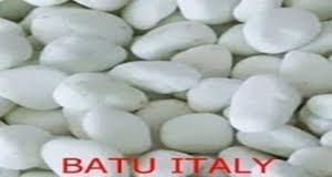 Harga Batu Koral Sikat Putih Italy