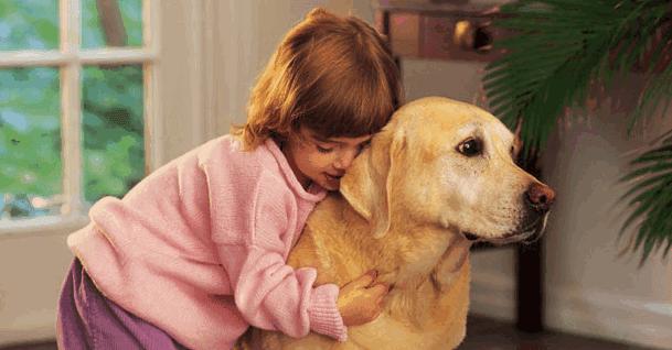 Studi: Memelihara Anjing Bisa kurangi Stres pada Anak