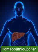 fatty liver in hindi