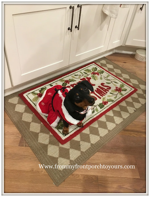 Farmhouse Christmas Decorations-Mini Doxie-Kitchen- From My Front Porch To Yours