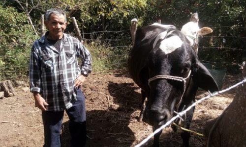 Campesinos centroamericanos forzados a emigrar