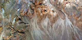allegory stone Yorkshire Terrier,abstract landscapes of deserts of Africa ,Abstract Naturalism,abstract photography deserts of Africa from the air,abstract surrealism,mirage in desert,expressionism,