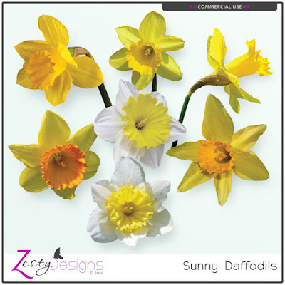https://www.digitalscrapbookingstudio.com/commercial-use/elements/cu-sunny-daffodils/