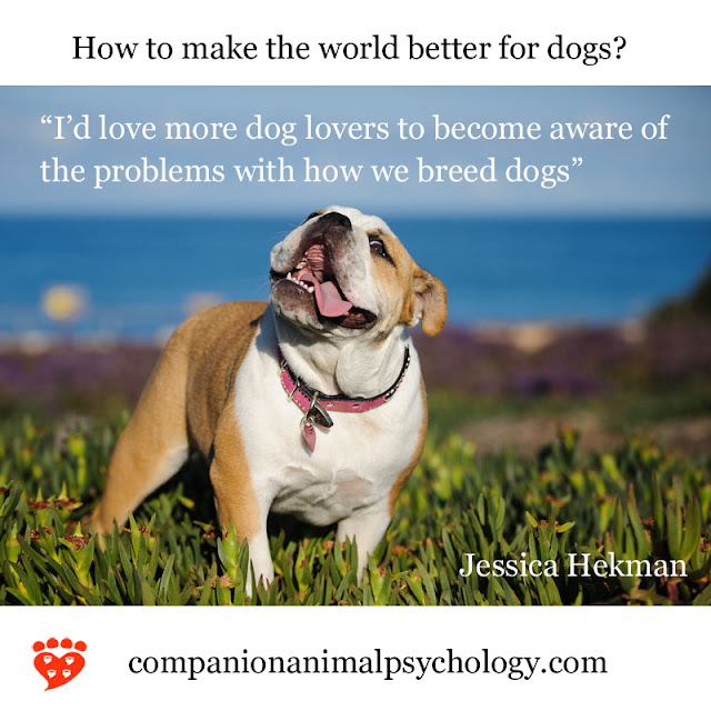 A better world for dogs: Become aware of the problems with how we breed dogs