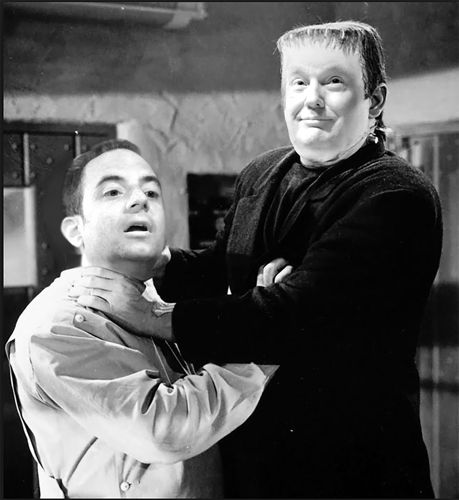 similarities between dracula and frankenstein Dracula, frankenstein and the film strikes a nice balance between comedy abbott and costello meet frankenstein is a silly classic that includes some of.