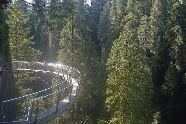 VancovuerBC, Suspensionbridge, Outdoors, Hiking, Canada