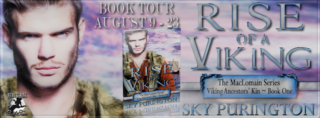 http://bewitchingbooktours.blogspot.co.uk/2016/07/now-scheduling-two-week-tour-for-rise.html